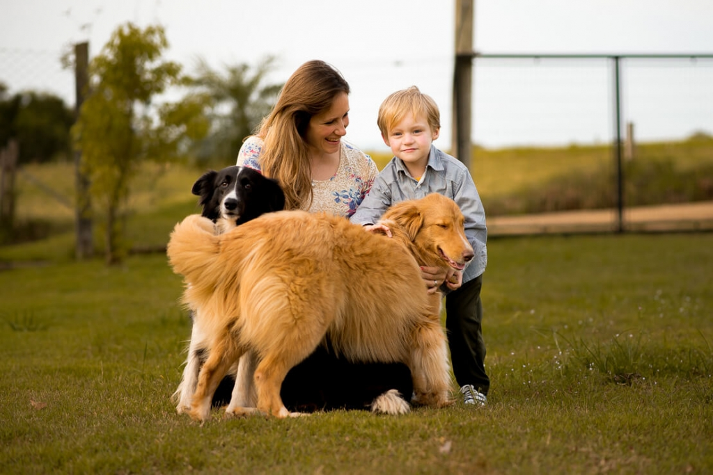 Pregnancy Photoshoot with Big Brother and dogs