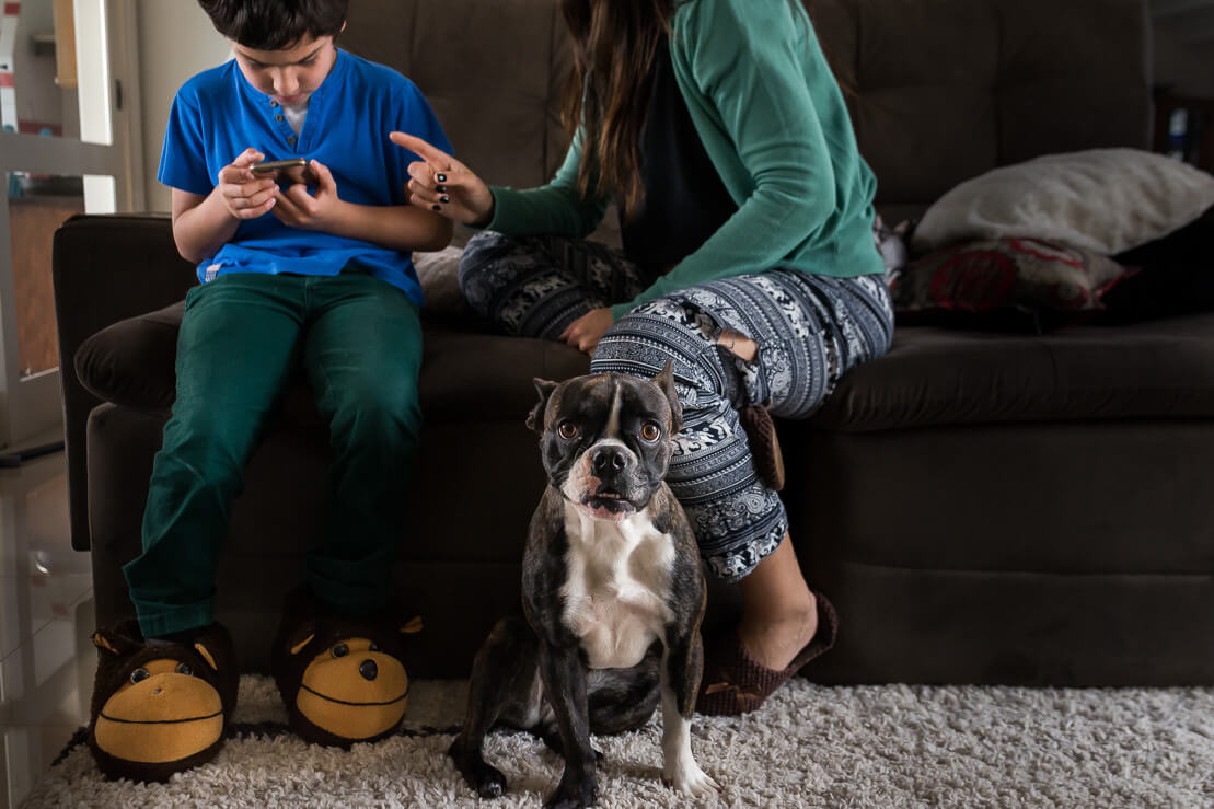 Mom educating son that is using a mobile while dog look to the camera during a pregnancy family photoshoot